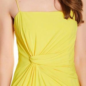Adrianna Papell Sunbeam Jersey Dress